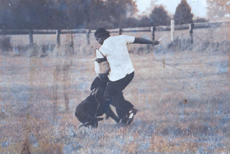 Man with Protection dog being trained by TorontoK9Center.com